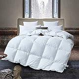 Deluxe Komfort Daunendecke, Bettdecke, 80% Gänsedaunen / 20% Feder, Füllgewicht 1200 Gramm, Warm und Leicht, 155x220 cm